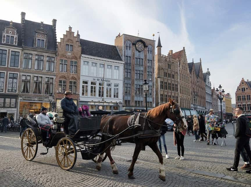 Even the horse drawn carriages in Grote Markt welcome dogs