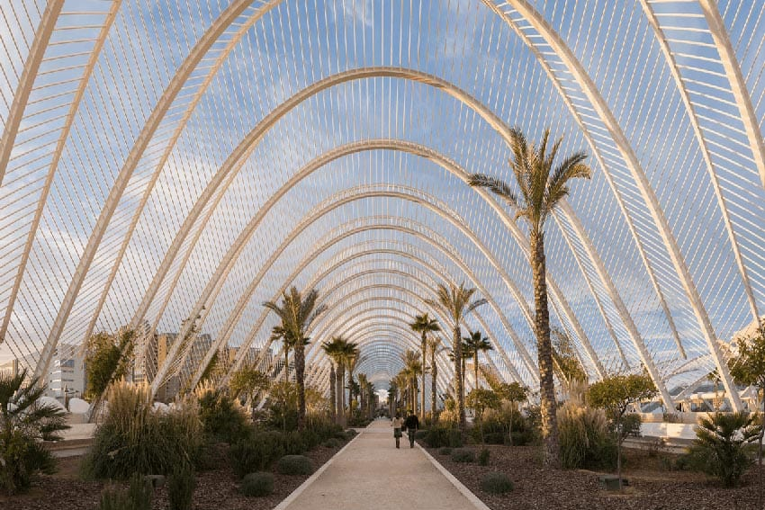The gardens of L'Umbracle