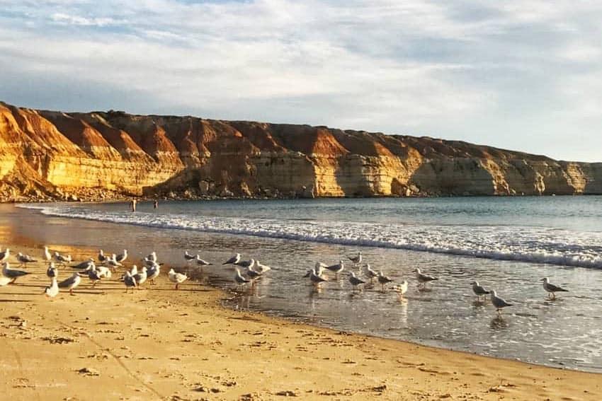 Maslin Beach, in the south near Adelaide, the capital city of South Australia. Marie Kimber photos.