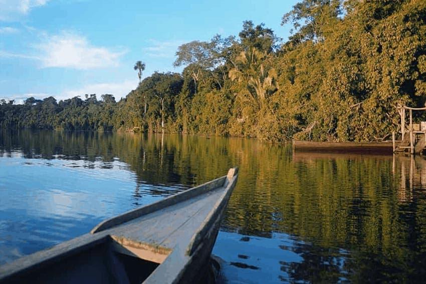 Puerto Maldonado: Piranha Fishing, Eco-touring 1