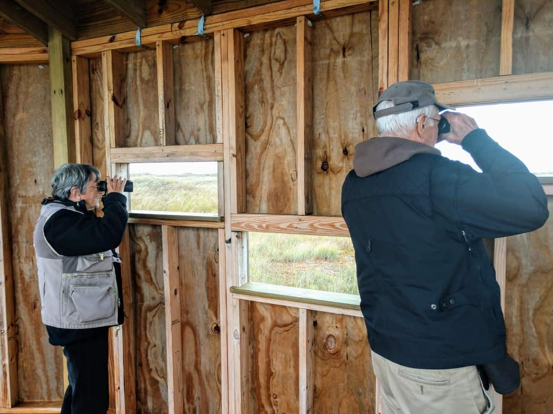 Birding volunteer guides Karyn and Tom Schmitz peer through windows in a bird blind at Padre Island National Seashore. Anne Braly photo.