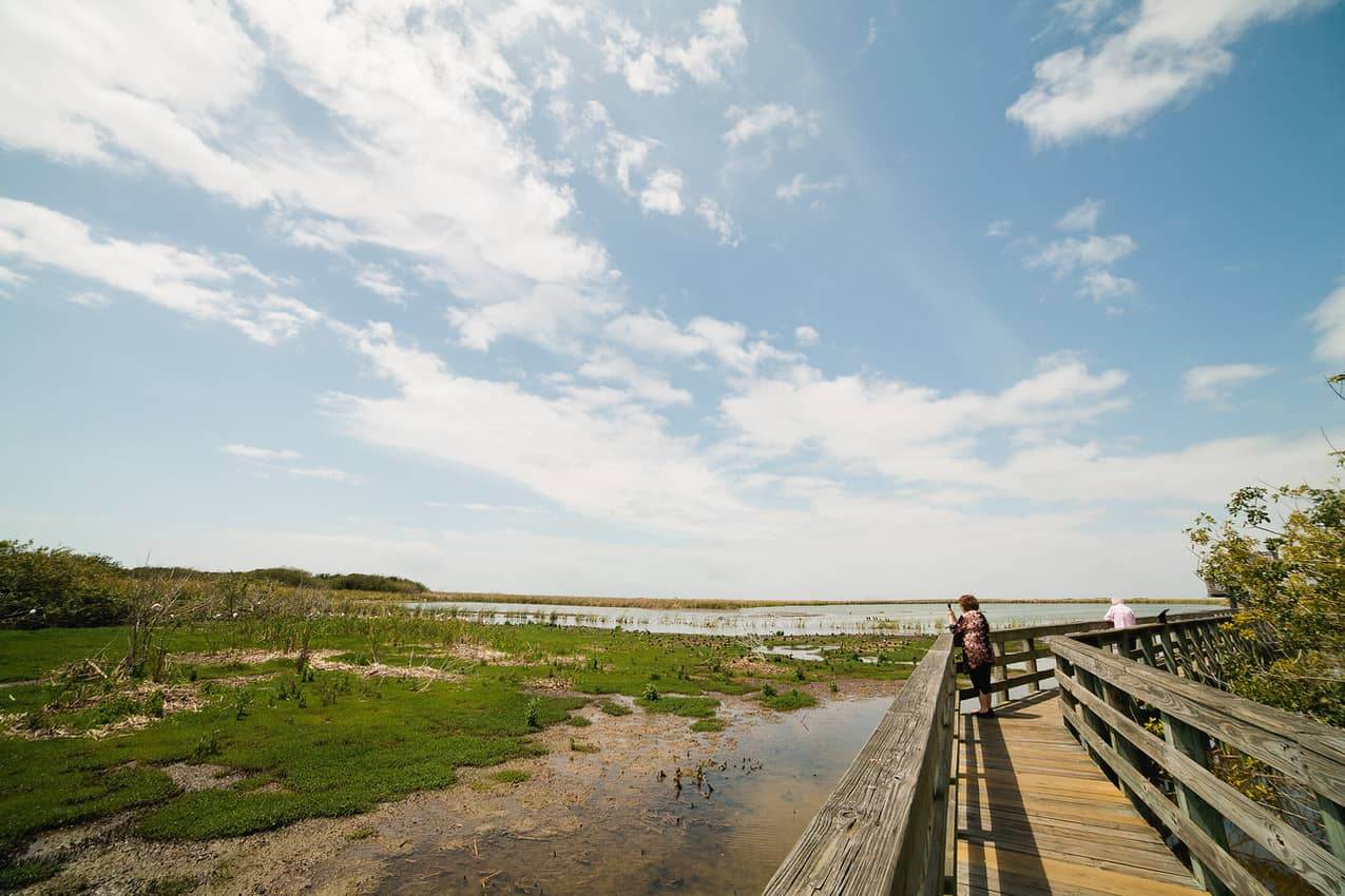 A boardwalk winds its way through Leonabelle Turnbull Birding Center in Port Aransas. Photo courtesy of Visit Corpus Christi.