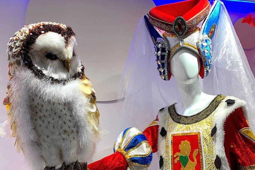 Carnival-costume