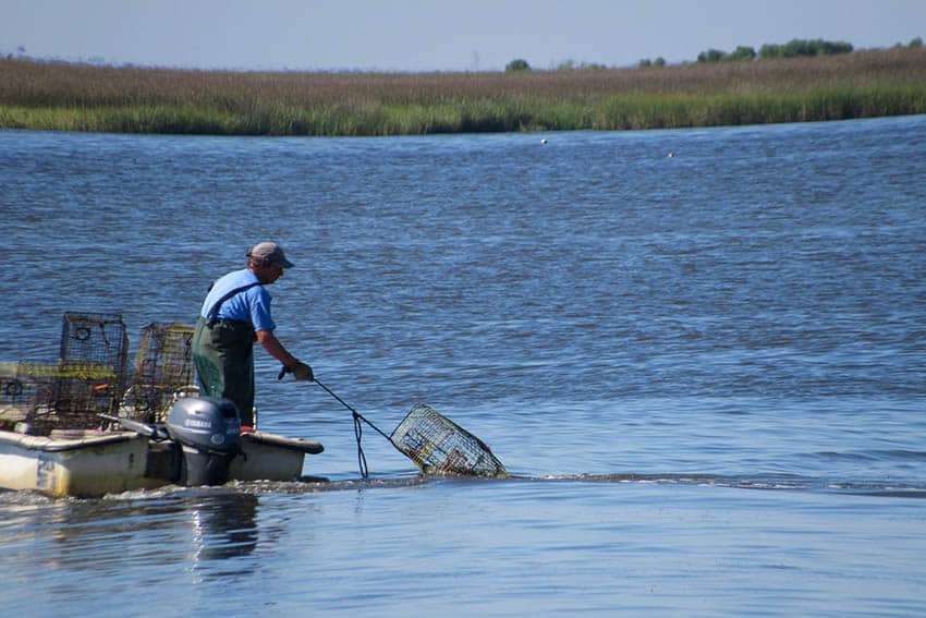 Mississippi's Coast: A Natural Place to Explore 1