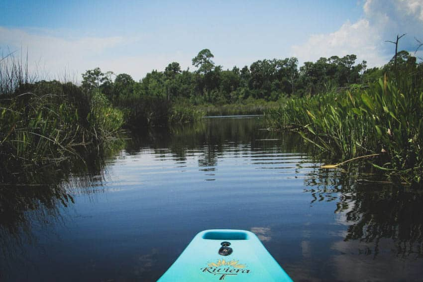 Mississippi's Coast: A Natural Place to Explore 2