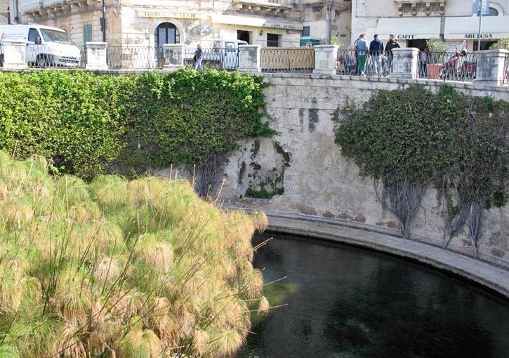 Fontana Aretusa,Siracusa, Sicily, Italy (Photo by Susan McKee)