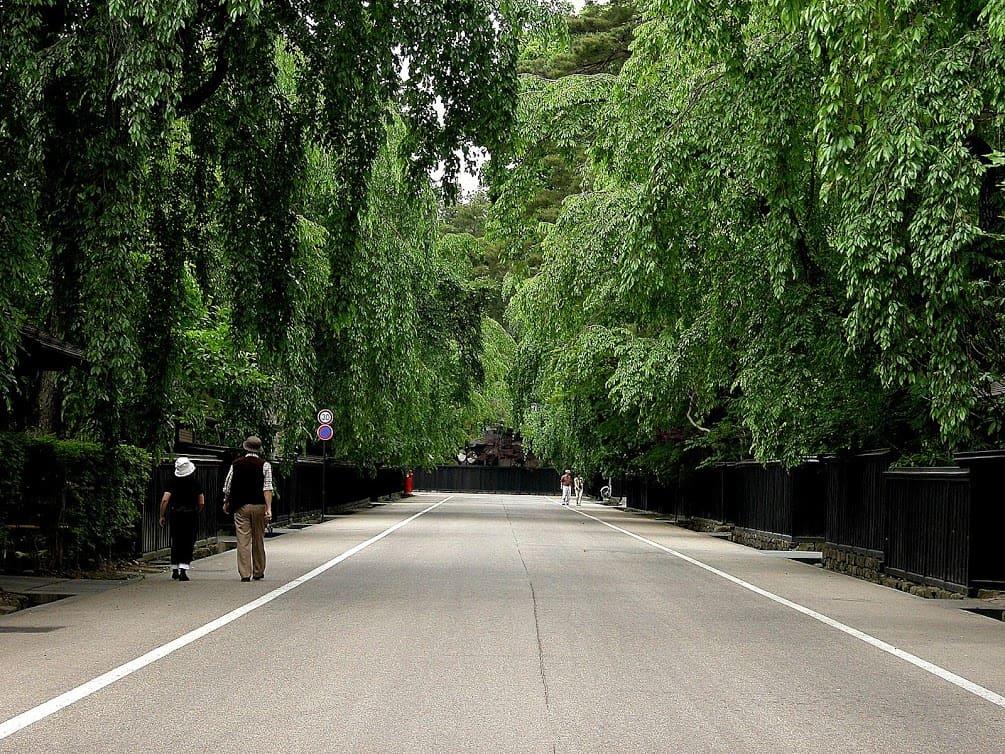 Bukeyashiki Dori avenue in Kakunodate's samurai district is famous for its wooden fences, samurai gates and 400 weeping cherry trees