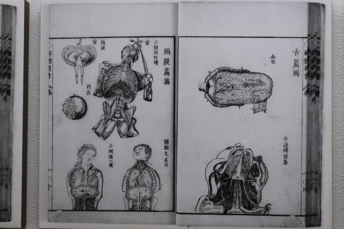 Kaitaishinsho, published in 1774 as Japan's first book on anatomy, was copied from a Dutch book and illustrated by a Kakunodate samurai named Odano Naotake