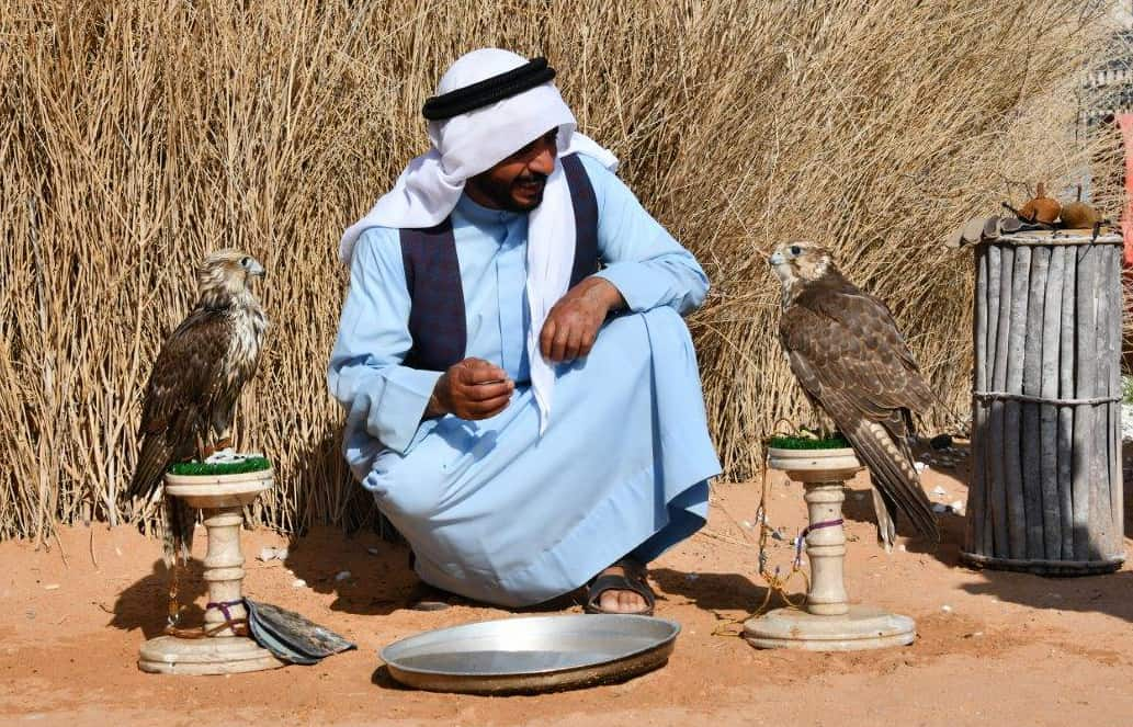 Bedouin falconer in the historic district of Al Fahidi