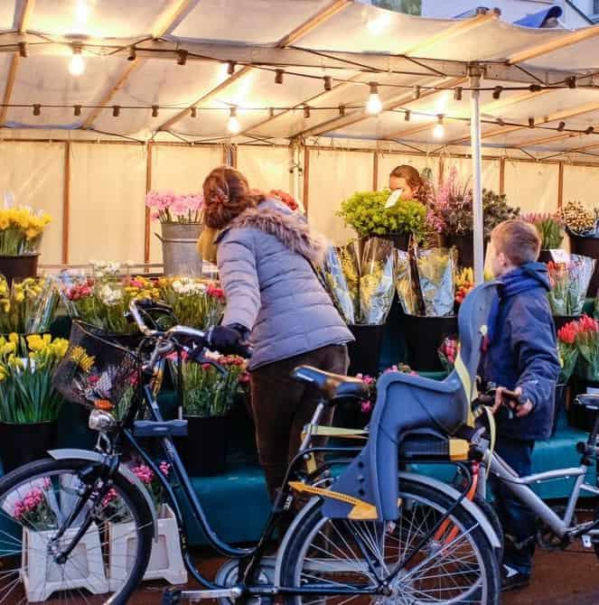 Flower market in Versailles. Alexandre Nestora photo.