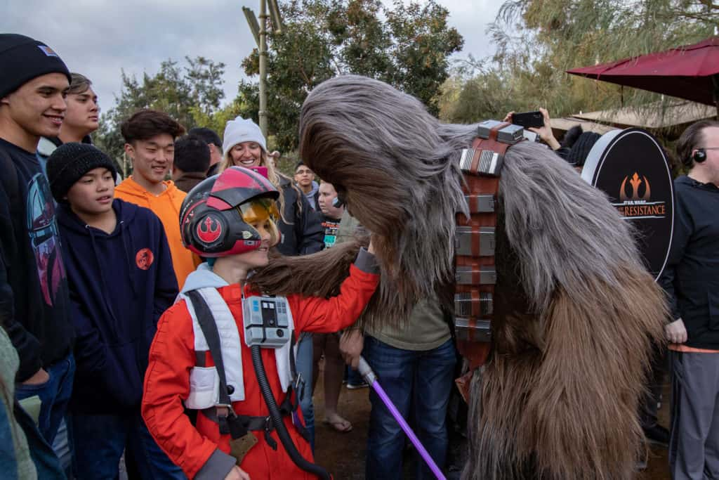 Star Wars Exhibit in Anaheim California