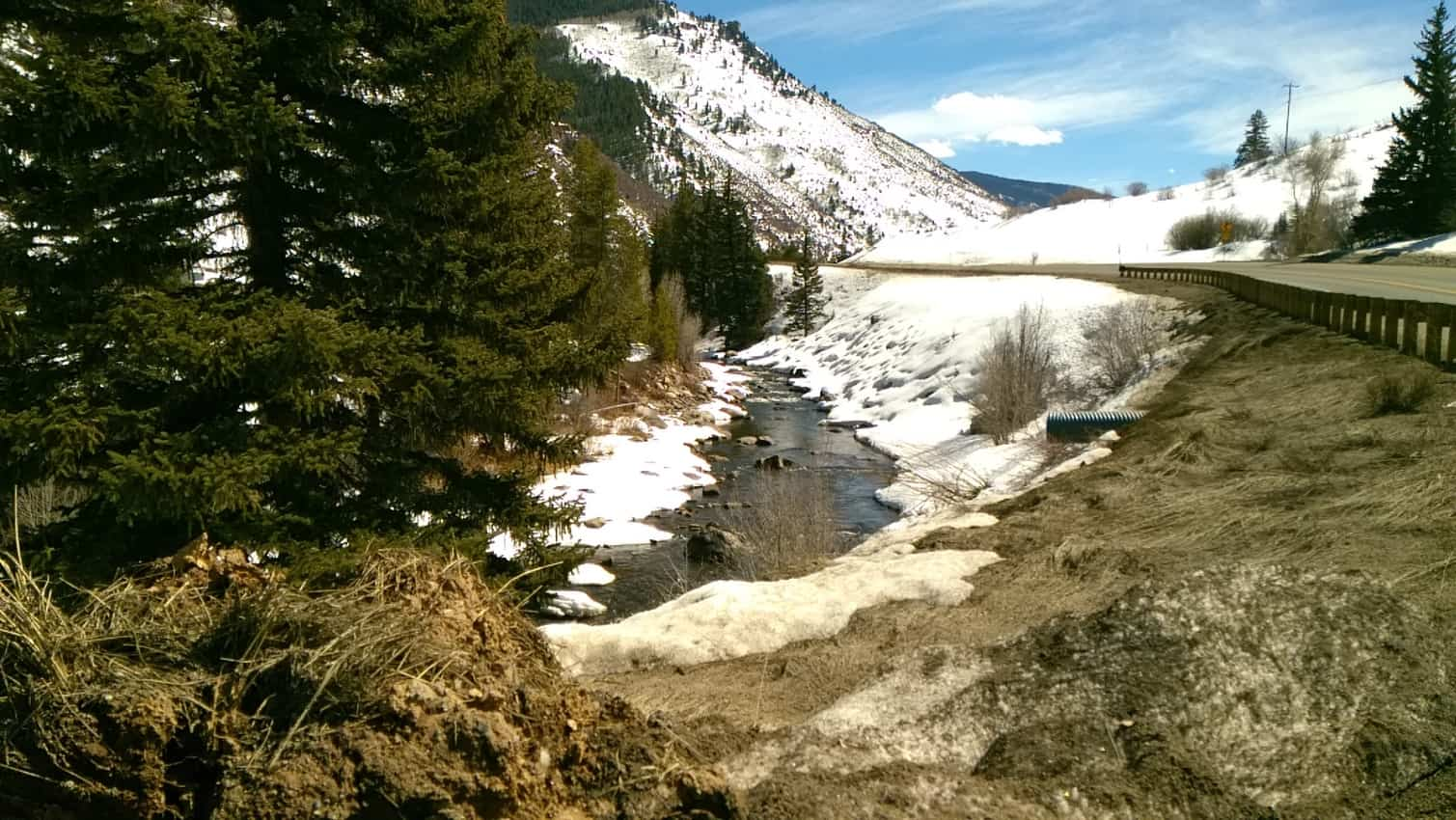 Trout stream in White River National Forest near Grand Junction, CO