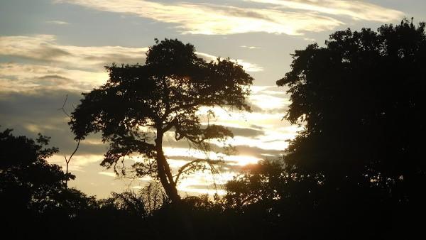 Guianas: A Breathtaking Adventure