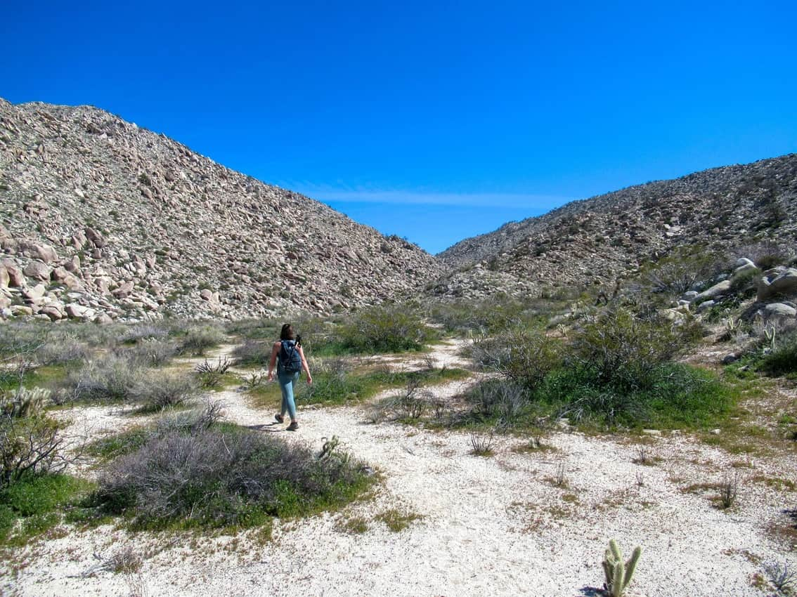 Hiking the Pictograph Trail in Anza Borrego.
