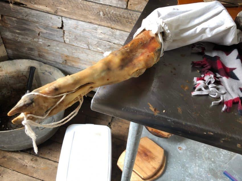 Moose leg waiting for slicing in Lori's cabin.