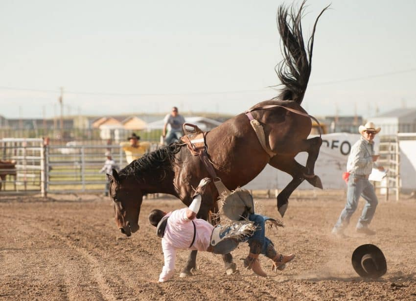 The Indian National Finals Rodeo is one component of the North American Indian Days event that takes place in July on the Blackfeet Indian Reservation.
