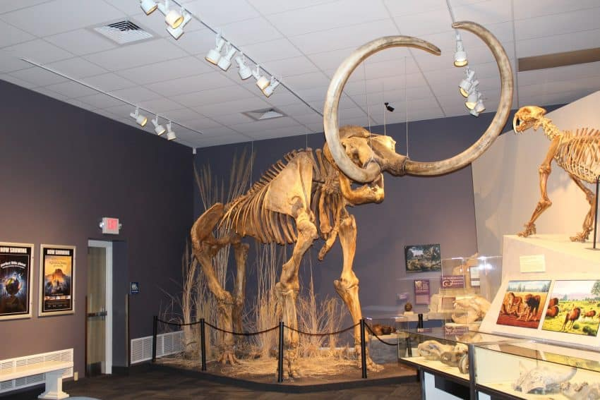 Woolly Mammoth located at The Herrett Center for Arts & Science (Twin Falls, ID)