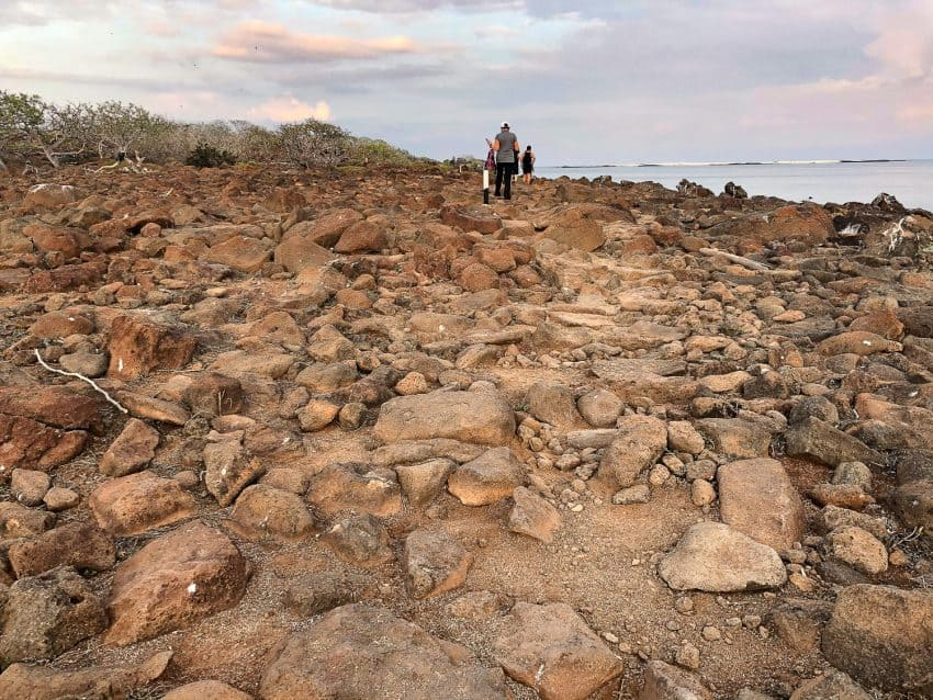 Hikes and walks on the various islands of the Galapagos can range from sandy beaches to rocky, uneven terrain. Donnie Sexton photos.
