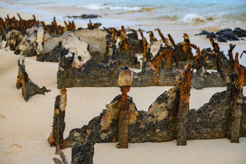The remains of WWII barges washed up on the shores of Santa Cruz and over time, the erosion has left a unique sculpture in the sand.