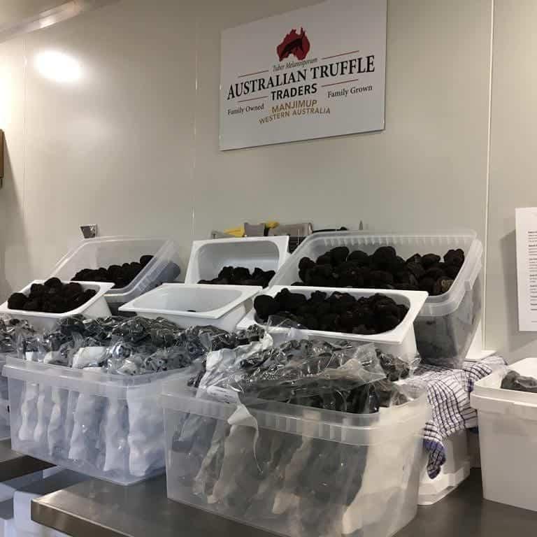 A cornucopia of black truffles