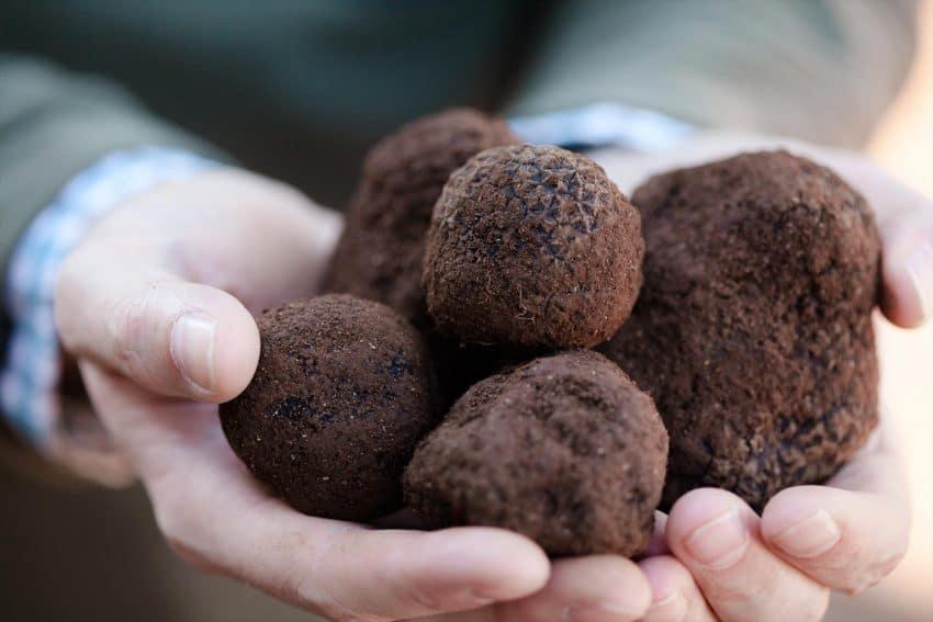 A handful of truffles