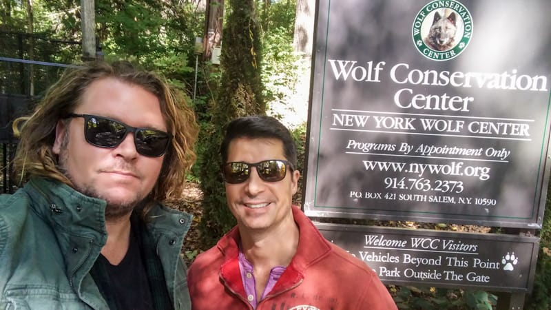 The Wolf Conservation Center in South Salem, New York, a hidden gem with appointments-only visits.