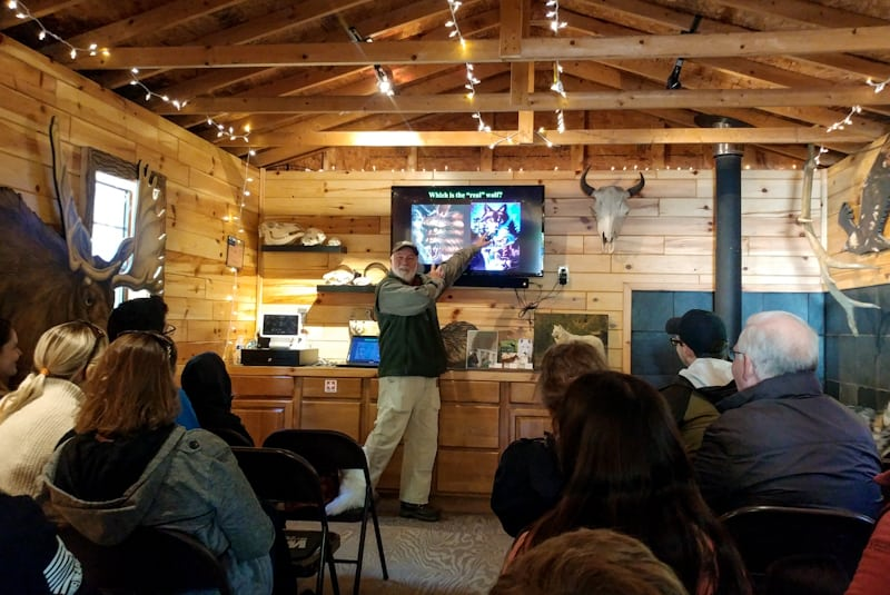 With WCC volunteer wolf expert, Joe Darling, it's an in-depth look at the indigenous wolves of North America and our relationship to them.
