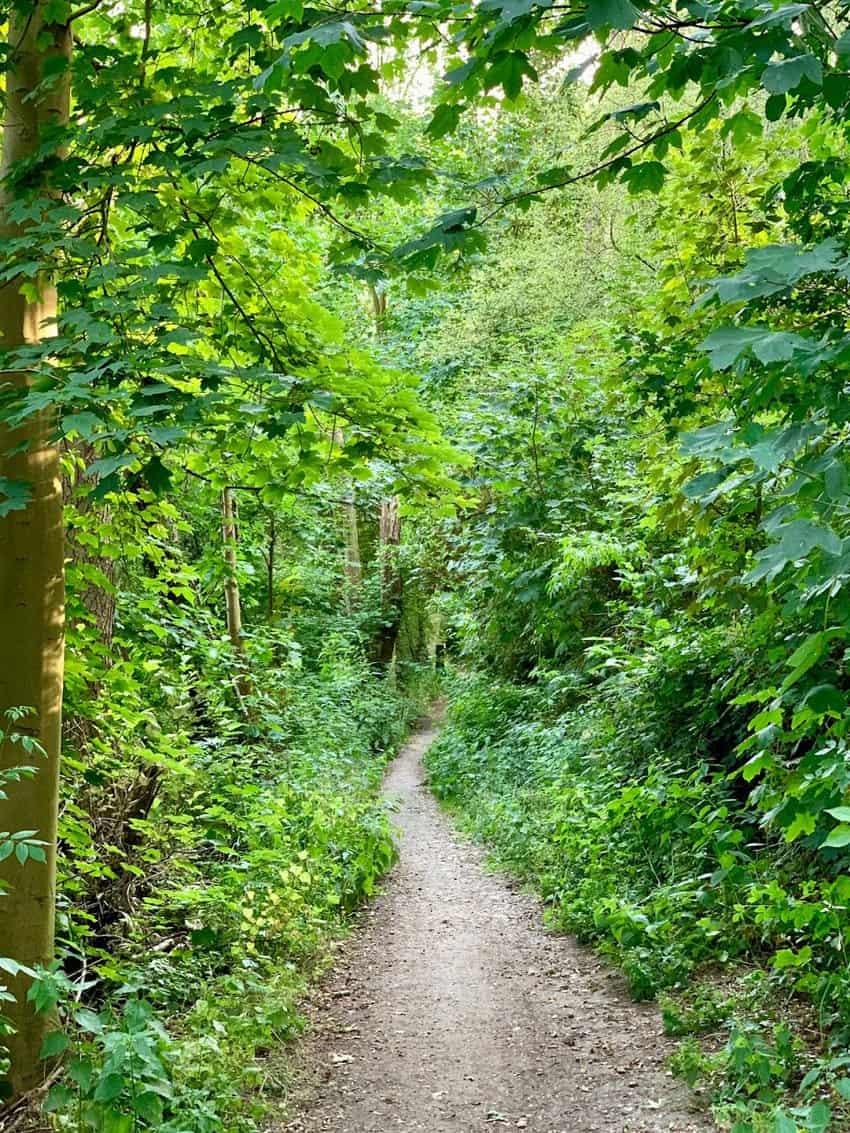 Beek Ubbergen Netherlands trail