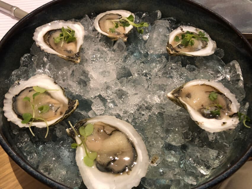 Rhode Island oysters at the Brenton Hotel, Newport.