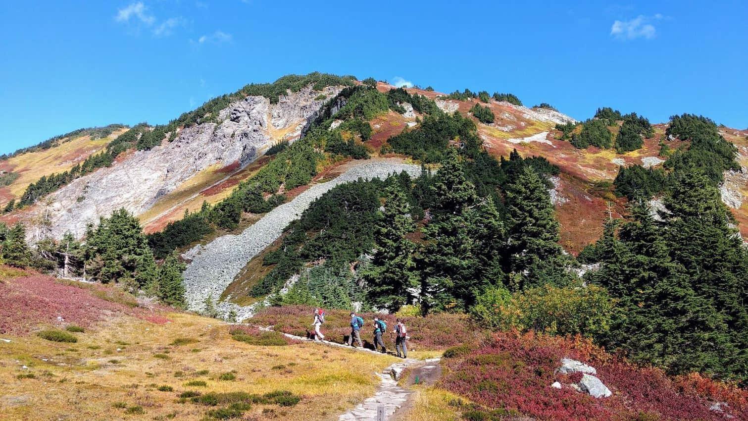 Cascade Pass Hikers at the pass