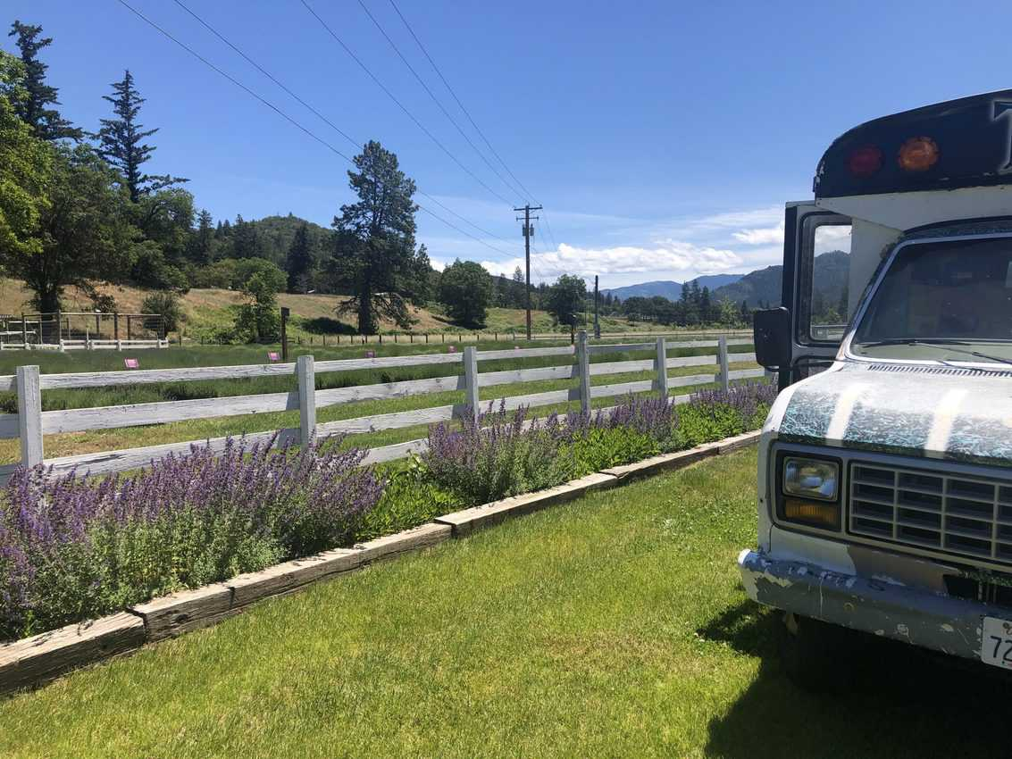 Bubba the bus in Oregon. Heather Jacks explains the places where she's taken a shower while living the vanlife.