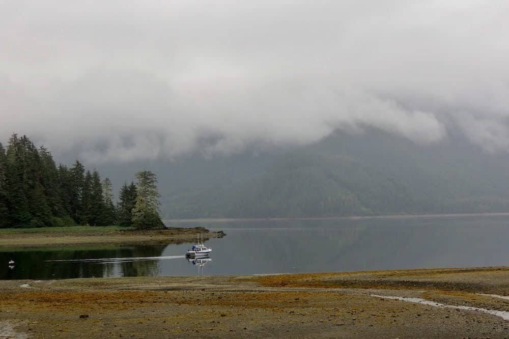 Halleck Island Tongass National Forest by Sharon Kurtz 1 1