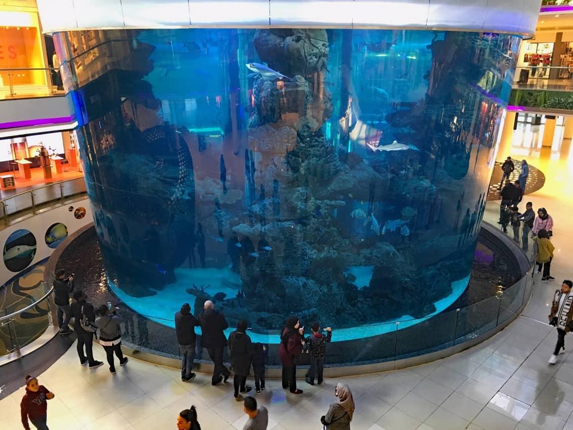 A three-story aquarium entertains shoppers inside the Morocco Mall.