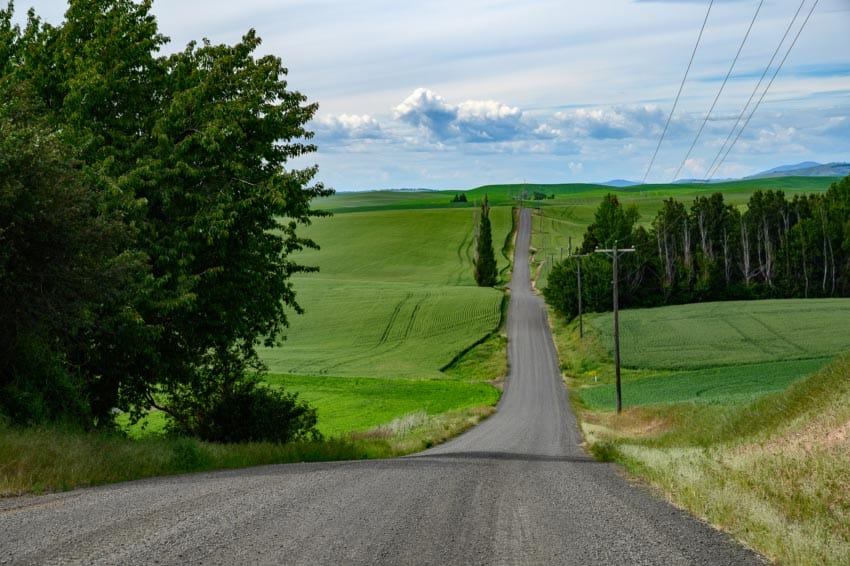 Hundreds of miles of gravel roads beg to be explored in the Palouse region of southeast Washington and southwest Idaho.