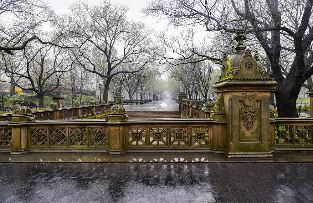 Central Park,NYC 2017