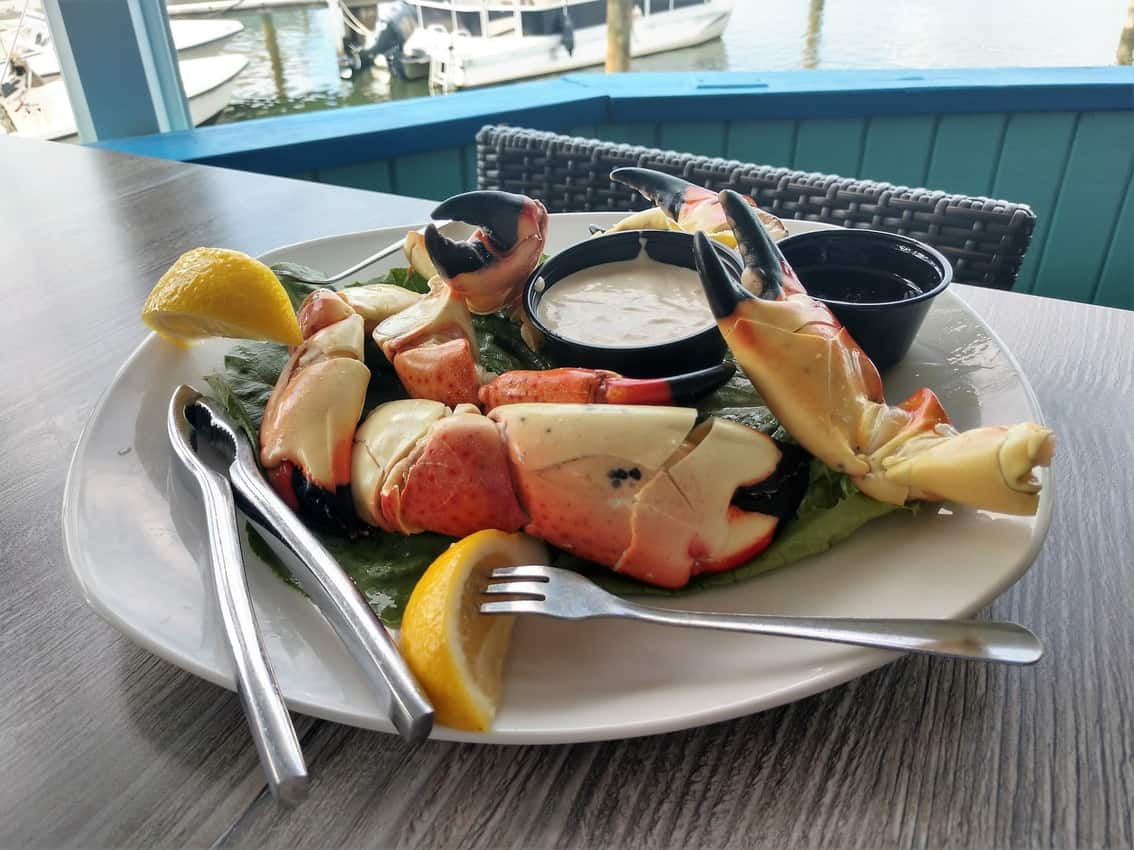 Stone Crab at the Dry Dock, Venice, Florida.