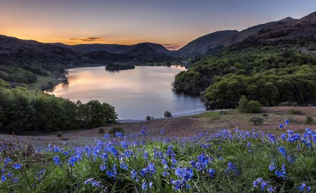 Grasmere sunset with bluebells. Copyright Harry Johnson Photography @harryfoto