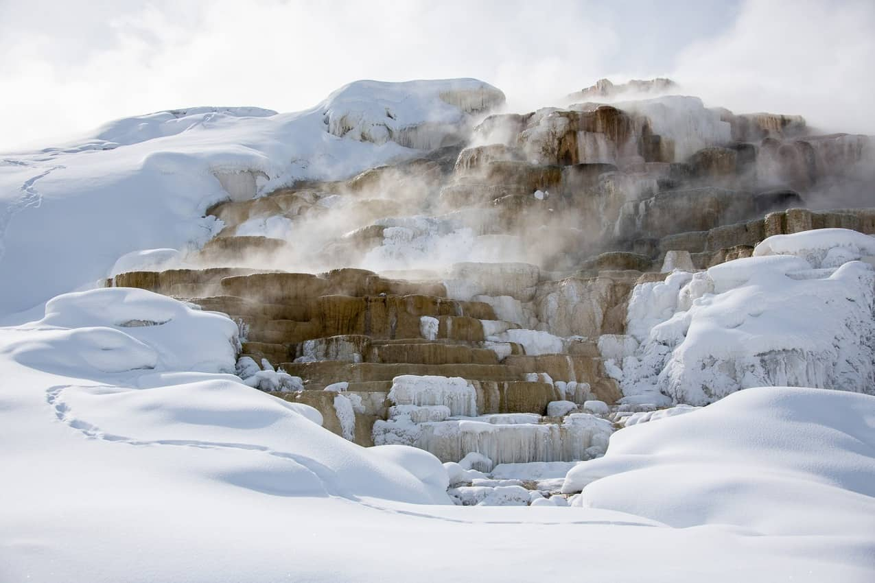 The terraces at Mammoth Hot Springs are a result of water mixing with limestone and creating travertine formations.