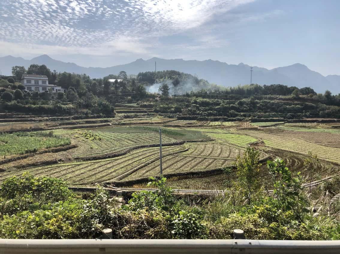 cultivated fields in Zhangjiejie 1
