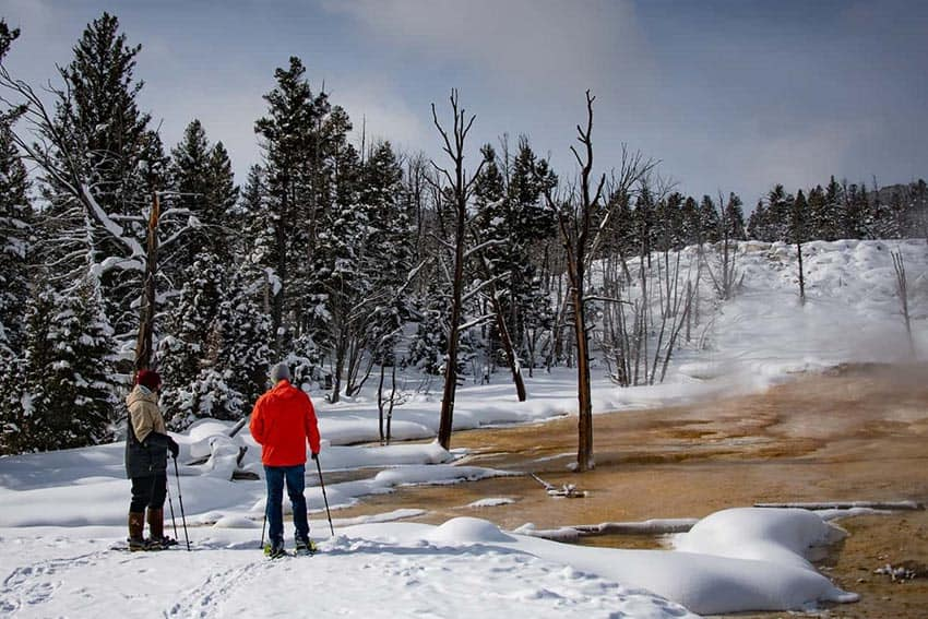 Yellowstone: Winter Road Trip
