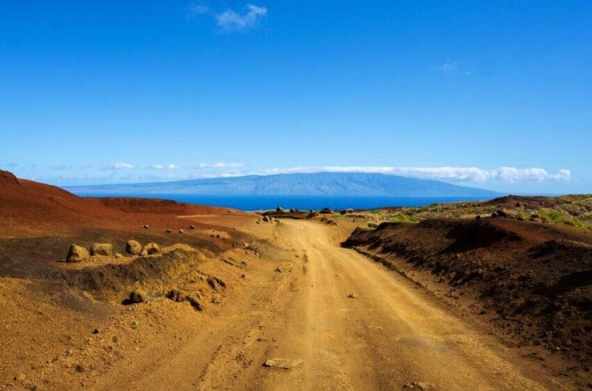 Starkness of Lanai. Last Minute Gift Guide