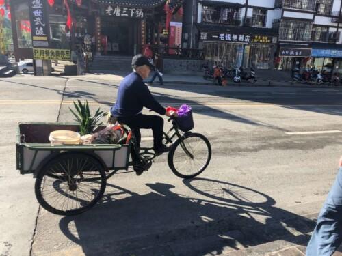 Wulingyuan District bike guy