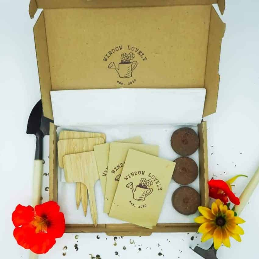 Window Lovely Seed Subscription box