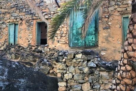 the date trees keep the turquoise door hidden in Misfat Al Abriyeen, Oman
