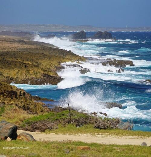 Aruba's Rustic Coast