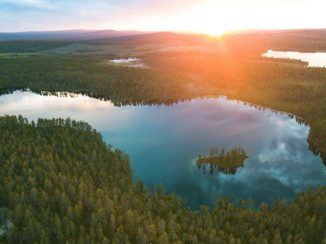 Salla national parks trees and lake