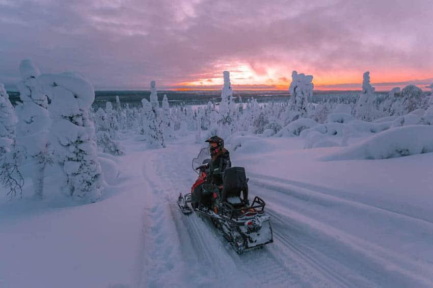 Scenic Salla National Park in Finland