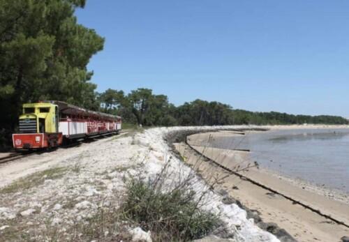 Le Petite Tourist Train