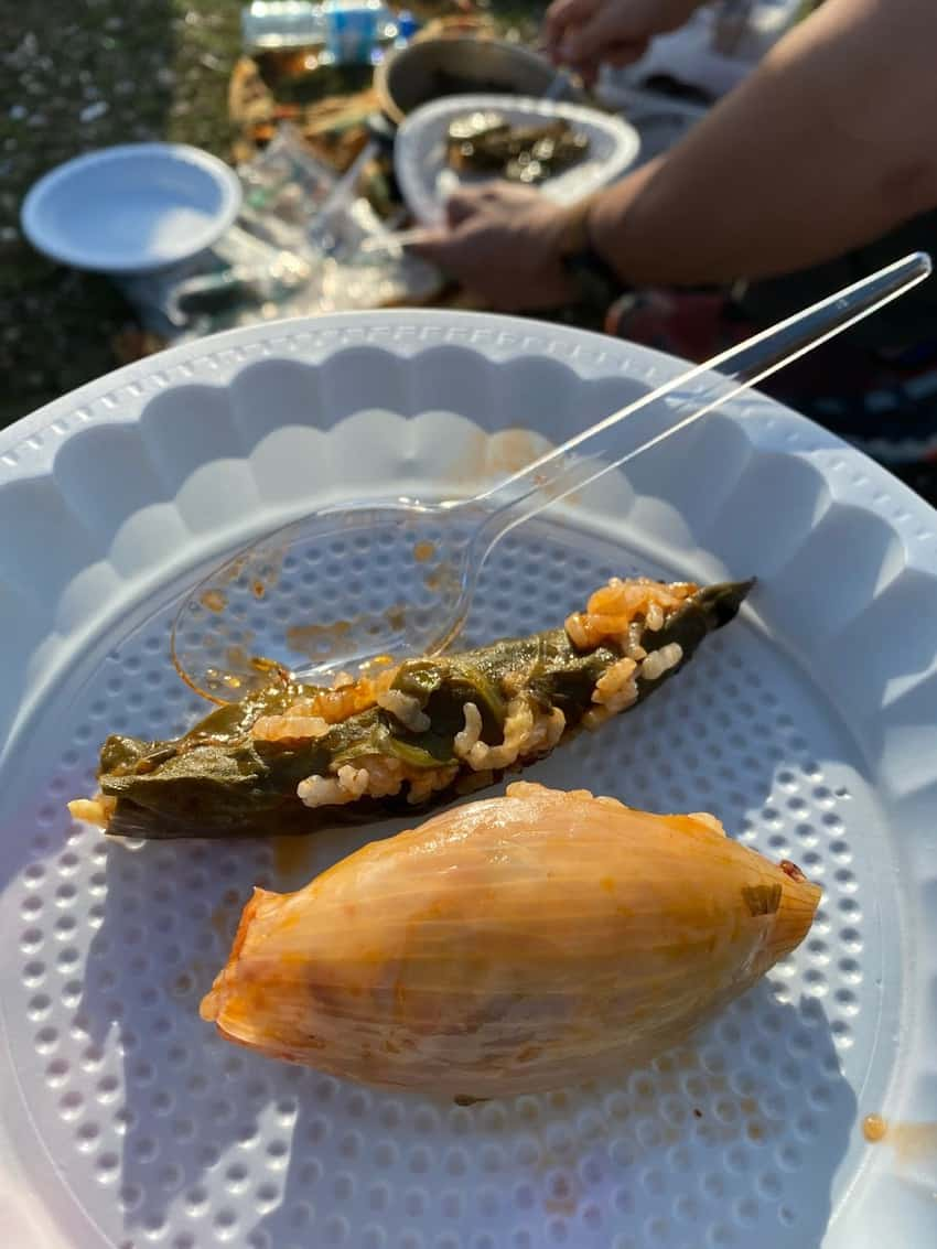 Our Kurdish colleague prepared homemade dolma, flavored and spiced rice wrapped in vegetables, for our picnic.