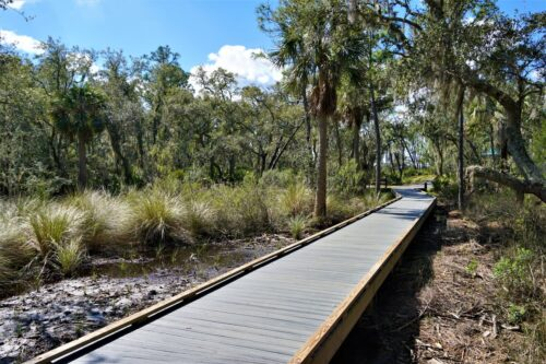 You'll encounter North Florida's unique mix of fresh and salt water marshes, woods and waterways. Nancy Moreland photo.